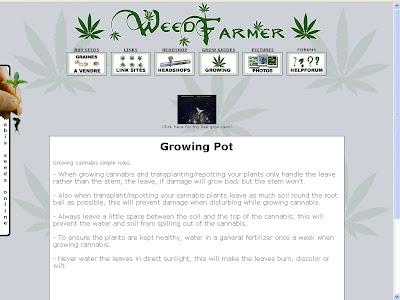 écran WeedFarmer