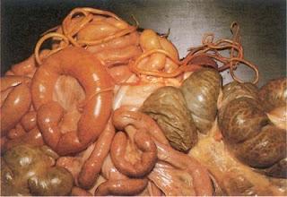 Gambar Cacing Perut (Askariasis) jenis cacing berbahaya