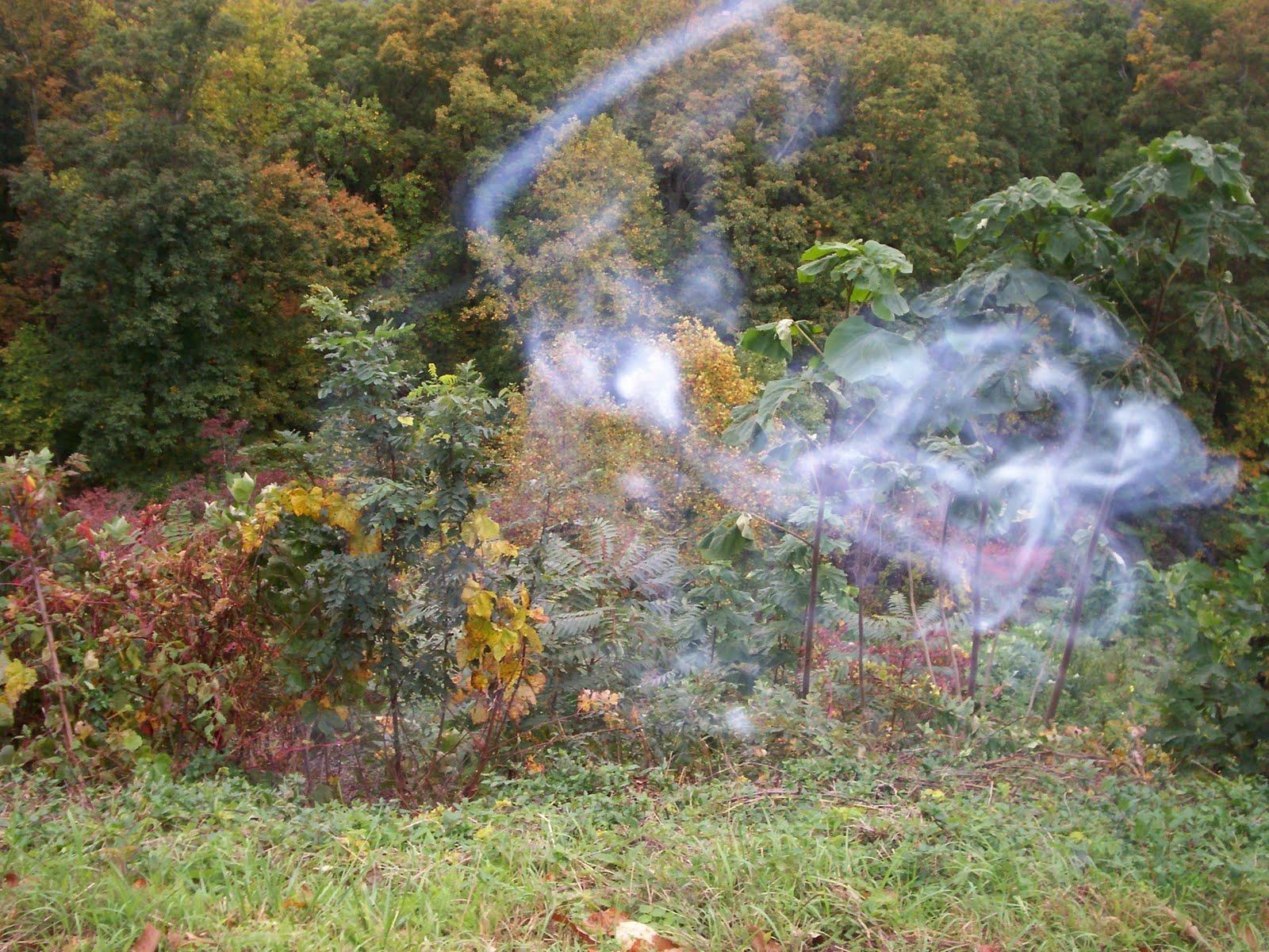 Ghost smoke