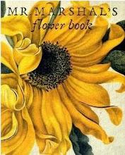 Favourite Book