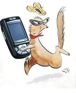 En caso de que te roben el celular! Que hacer!!