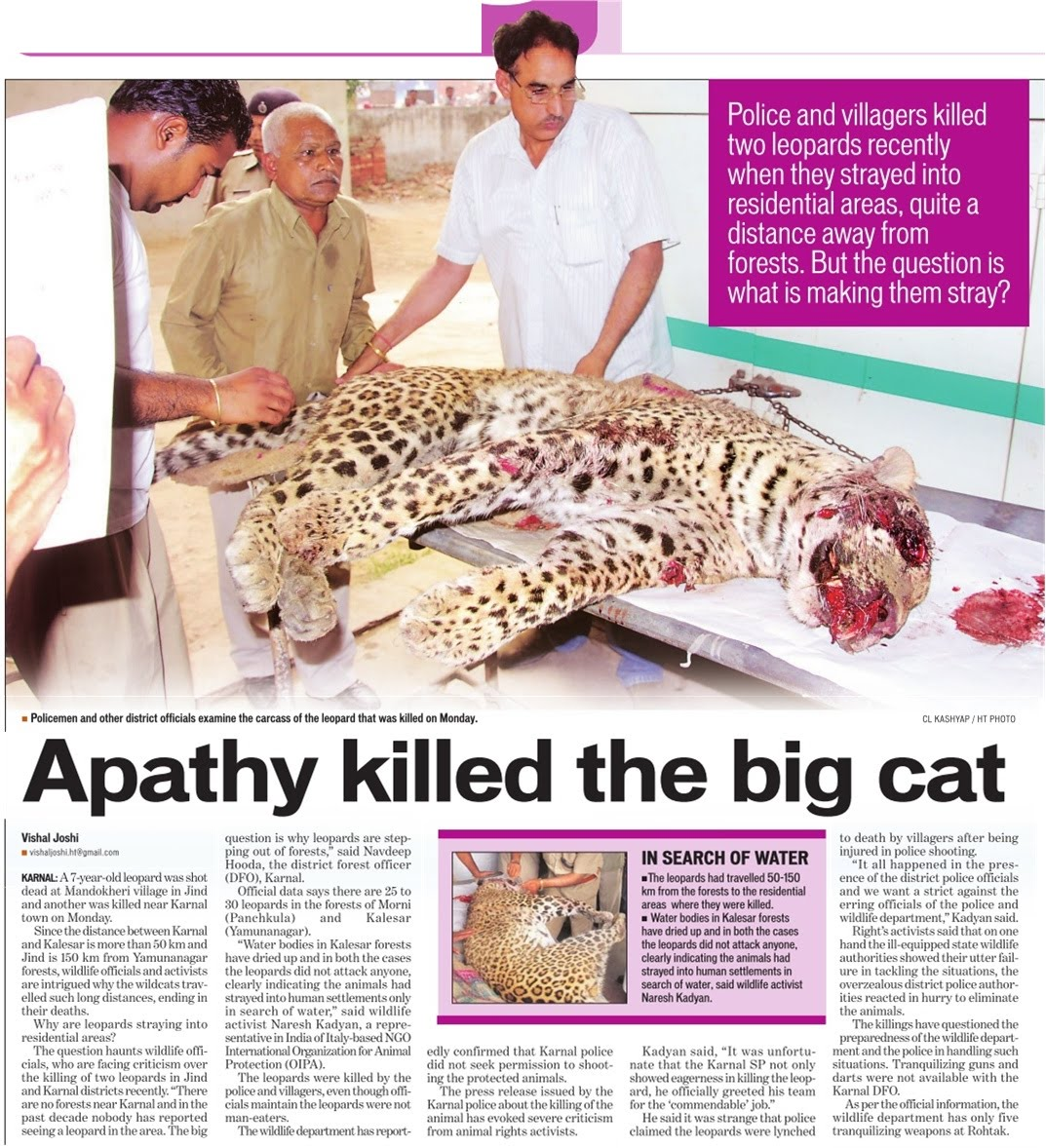 Leopard killings for no reasons in Haryana