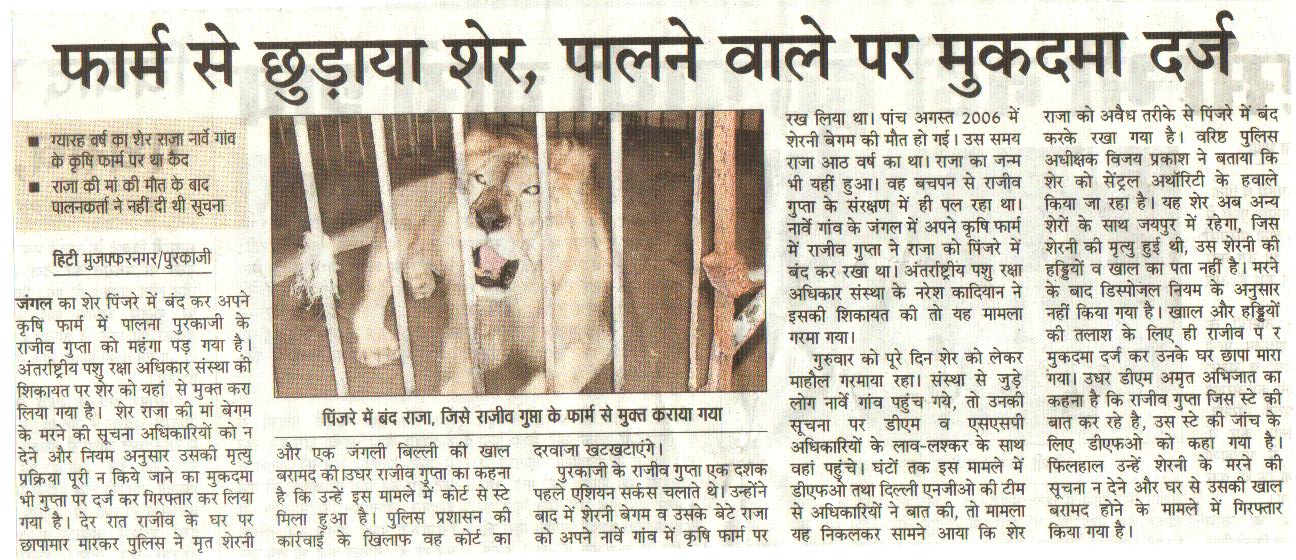 African lion rescued by Naresh Kadyan - Zee News