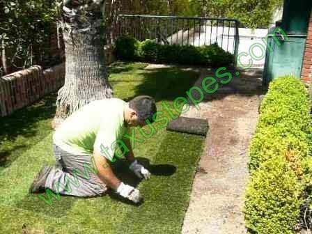 Taxustepes venta de cesped natural en rollos desde 4 - Trabajo jardineria madrid ...