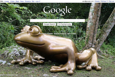 customized google.com home page screenshot with a frog
