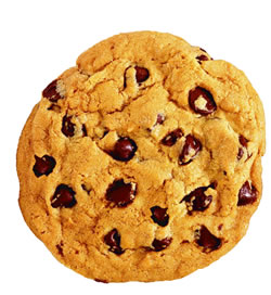 [chocolate-chip-cookie_01.jpg]