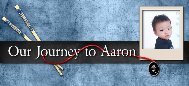 Our Journey to Aaron