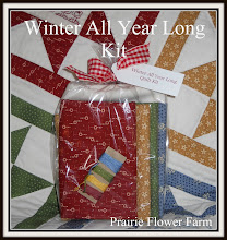 Winter All Year Long Quilt Kit for Purchase