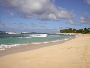 The North Shore 2005