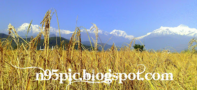 new year in pokhara