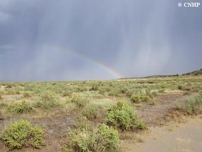 rainy rainbow
