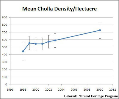 graph of average cholla density over time