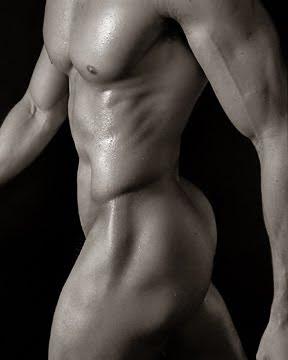 Torso Desnudo Masculino