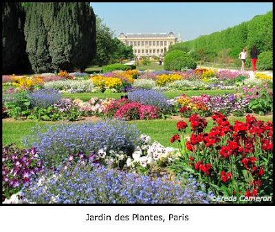 Defining your home garden and travel paris jardin des for Jardin plantes paris