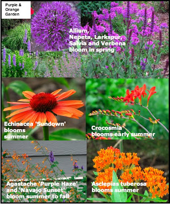 purple and orange flower garden Defining Your Home, Garden and Travel: Shuffling Plants