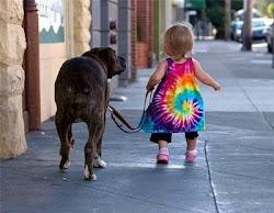 Confiar... Caminando se hace camino