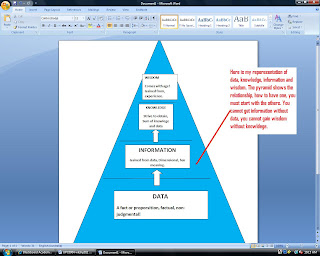 data information knowledge wisdom pdf