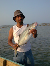 Fishing Tour