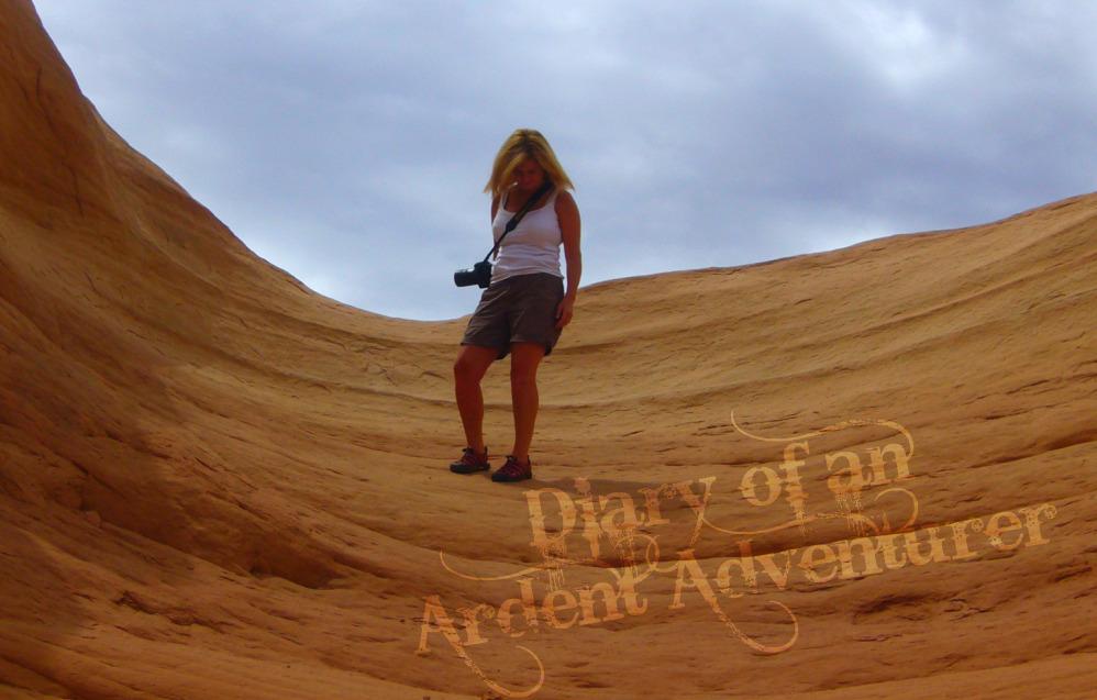 Diary of an Ardent Adventurer