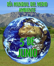21) Ambiente y economicismo