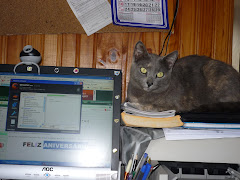 Paulina acompanhando o meu trabalho...