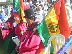 la bandera del estado plurinacional de Bolivia