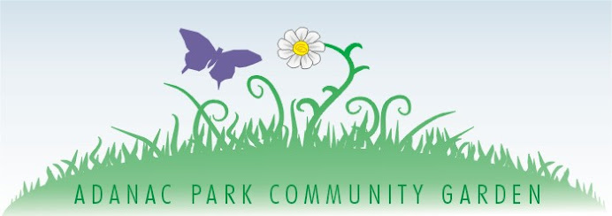 Adanac Park Community Garden