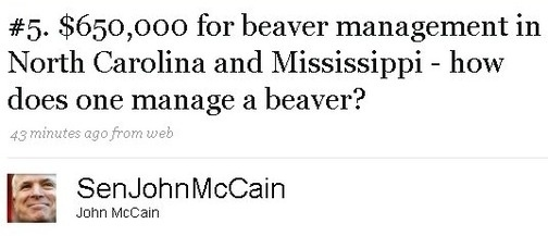 [john-mccains-beaver-management.jpg]