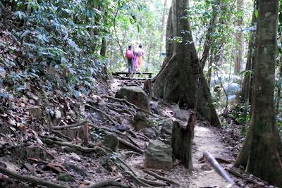 Kuala Tahan - Berjalan Ke Titi Gantung