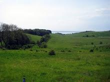Rydebäck hills
