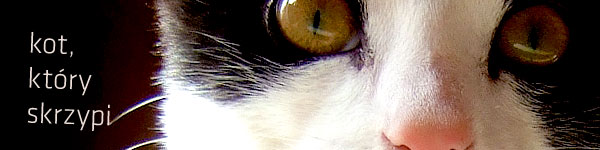 Kot, który skrzypi.