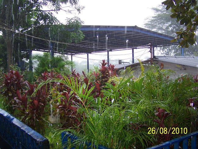 Las lluvias en Delicias de Concepción