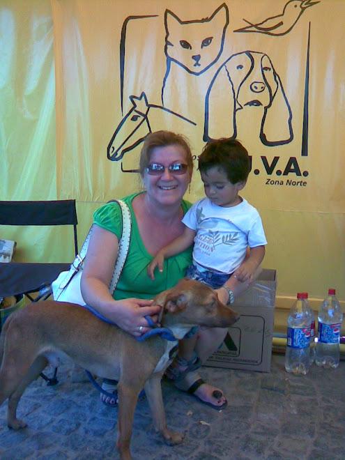 RUBIO adoptado