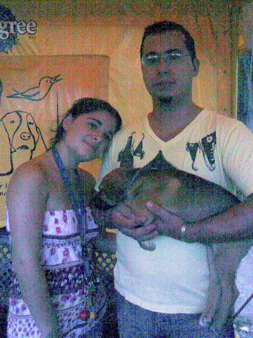 Cachorro adoptado