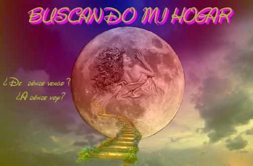 BUSCANDO MI HOGAR