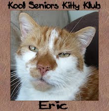Eric is proud to be a senior kitty.
