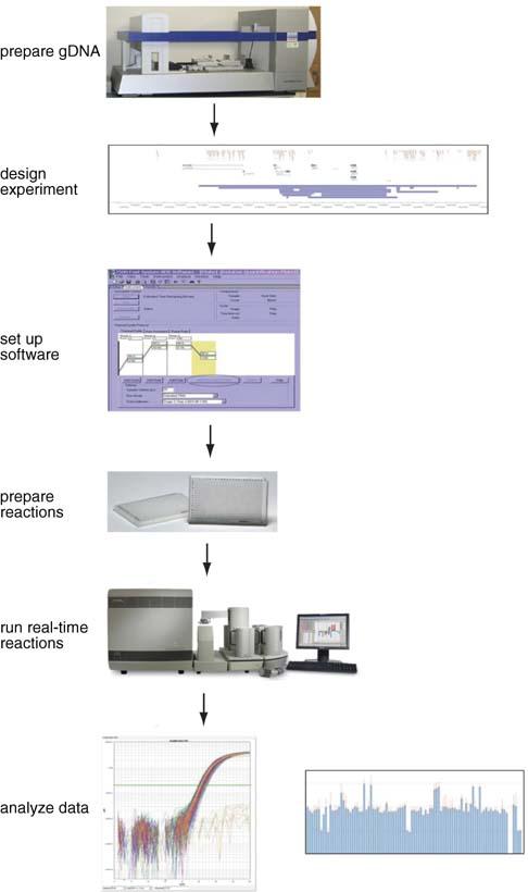 reaction time experimental design