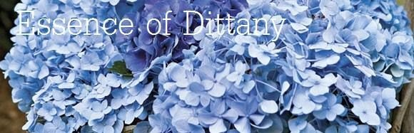 Essence of Dittany