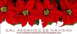 www.saladornosdenavidad.blogspot.com