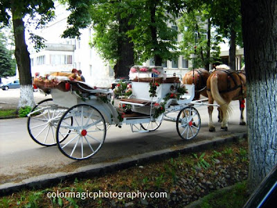 wedding carriage close up