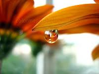 Mirror raindrops