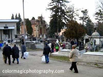 Central cemetery-Cluj Napoca