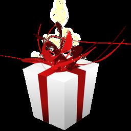 Gift box-icon
