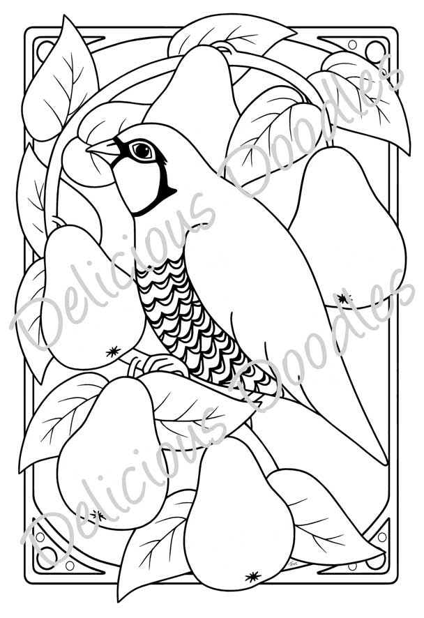 Partridge Coloring Page Coloring Pages