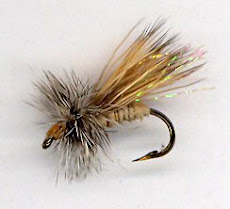 Sparkle Caddis fly