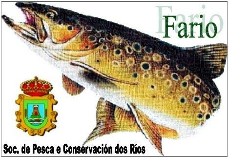 S.P.C.R. FARIO