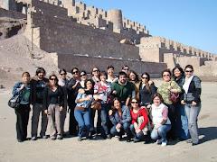 Post-Título Terapia Sistémica de Familias y Parejas ANTOFAGASTA Promoción 2007-2009