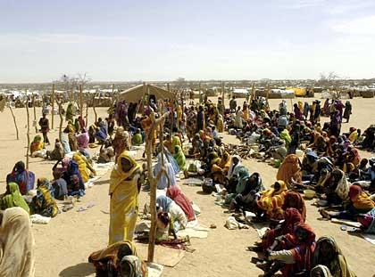 Rapporto 2011 sulla crisi in Darfur. Domani la presentazione al Senato
