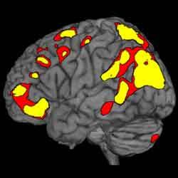 Kronestesia atau Perjalanan Waktu Mental