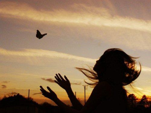 ظــلآآل Butterfly_Flight_by_